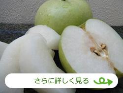 梨(かめい農園)